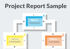 Project Report Sample